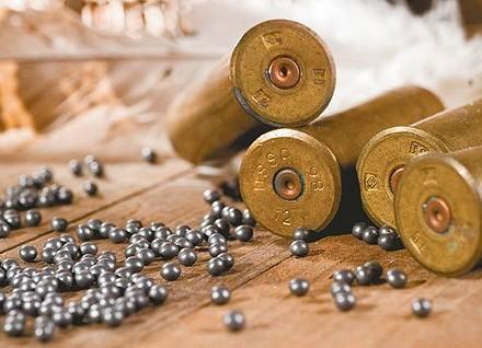 ВЗапорожской области удетей вруках взорвался боеприпас