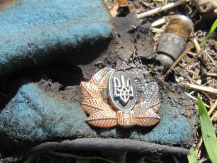 ООН: число погибших конфликта вгосударстве Украина превысило 9,6 тыс.
