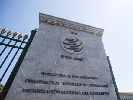 Украина начала процедуру обжалования вВТО транзитных ограниченийРФ