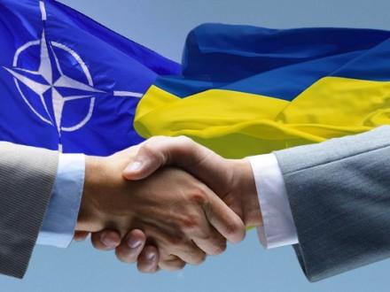 НАТО несомненно поможет Украине приблизиться кстандартам Альянса
