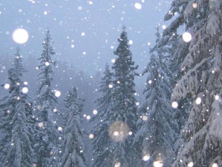 До-10 игололед обещают синоптики вКалужской области