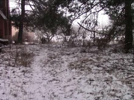 Полиция задержала женщину за убийство жительницы Полтавской области