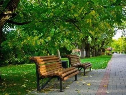 ВКиеве вокруг озера Серебряный кол создадут парк отдыха