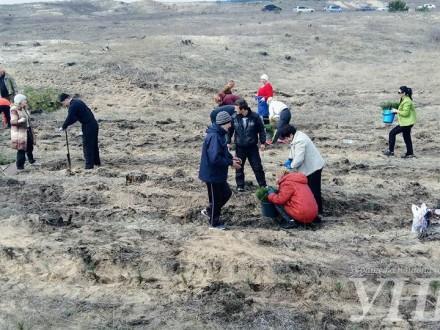 Жителі Херсонщини масово вийшли на акцію з посадки лісу
