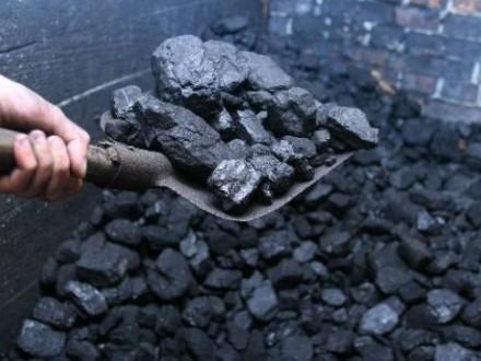 Насалик: законтрактоване на травень українськими компаніями вугілля має надійти з ПАР