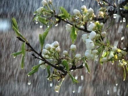 Какой будет погода вУкраинском государстве всреду— Дожди ипохолодание