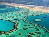 Большой Барьерный риф начал терять окраску - аэросъемка