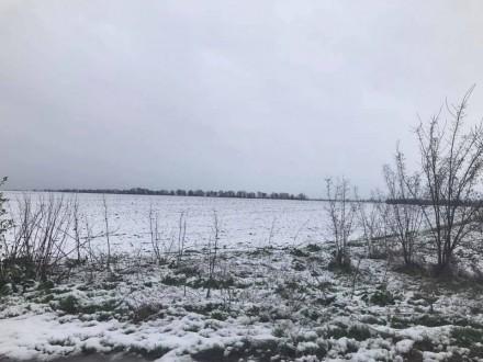 На Херсонщині випав сніг