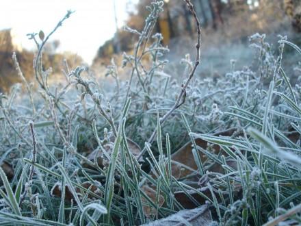 Із завтрашнього дня вУкраїні очікується похолодання