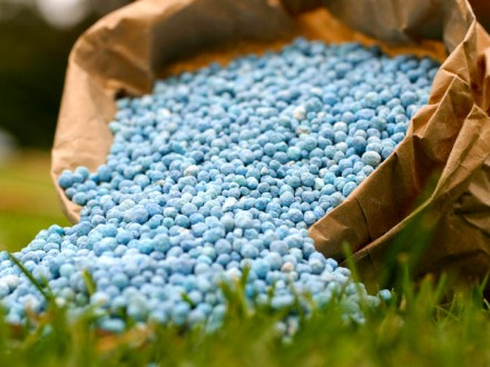 ЗМІ: Україна введе захисне мито для російського шоколаду