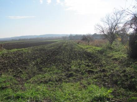 На Вінниччині учасники бойових дій запалили шини під сільрадою