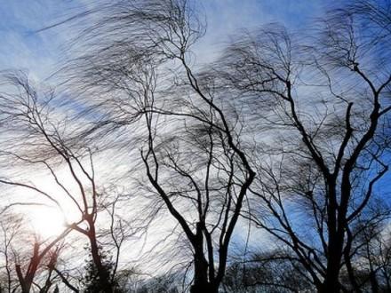 УКиєві очікуються сильні пориви вітру