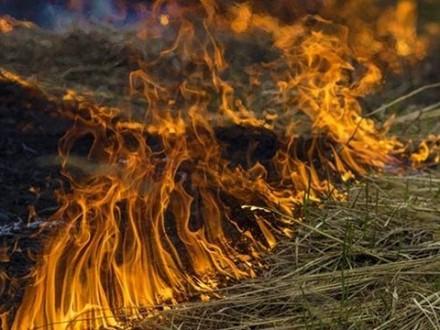Пожежна небезпека утримається уКиєві до10 червня