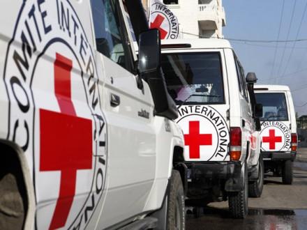 МКЧХ направив нанепідконтрольну Києву територію Донецької області 17 тонн гумдопомоги