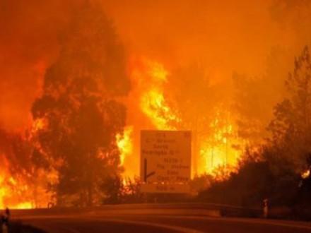Українців немає серед постраждалих під час пожеж уПортугалії