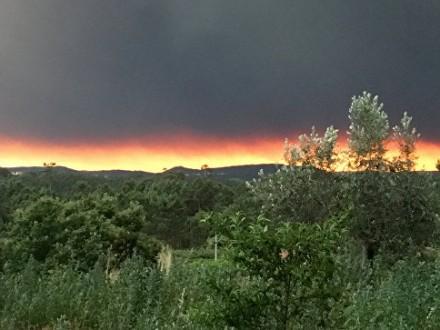 Потужні лісові пожежі вПортугалії: кількість жертв сильно зросла