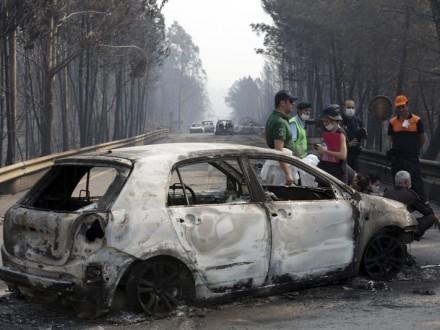 УПортугалії оголосили триденну жалобу зазагиблими під час лісової пожежі