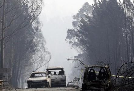 УПортугалії зросла кількість жертв пекельних лісових пожеж