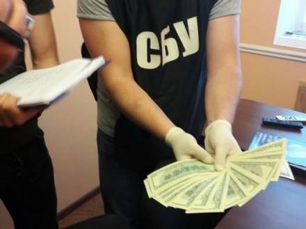 УЖитомирі СБУ затримала депутата нахабарі забезперешкодну роботу бурштинокопачів