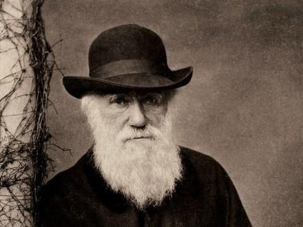 У турецьких школах припинять викладати теорію Дарвіна