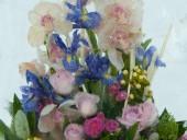 На Певческом поле откроют выставку замороженных цветов