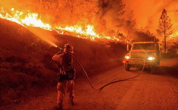 УКаліфорнії оголосили надзвичайний стан через лісові пожежі