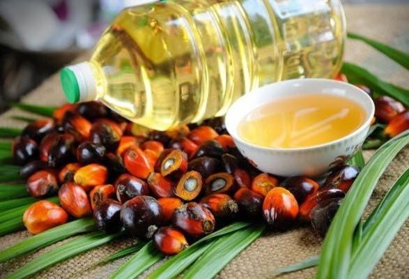 """БПП, """"радикали"""" та Опоблок заявили про готовність заборонити пальмову олію"""