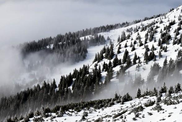 Рятувальники попередили про лавинну небезпеку на Івано-Франківщині (9.99 24) a03e26a43d17f