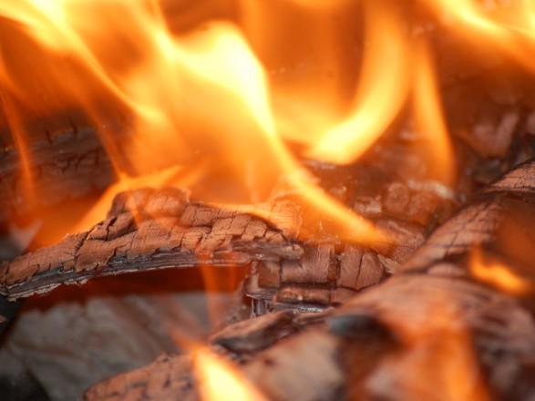 Уселі Черкаської області 4 дітей загинули під час пожежі вбудинку