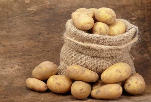 Столичному ресторану продали мішок картоплі, яку школярі збирали для воїнів АТО