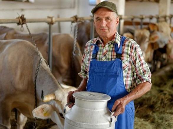 Стало известно, продолжится ли закупка молока у населения