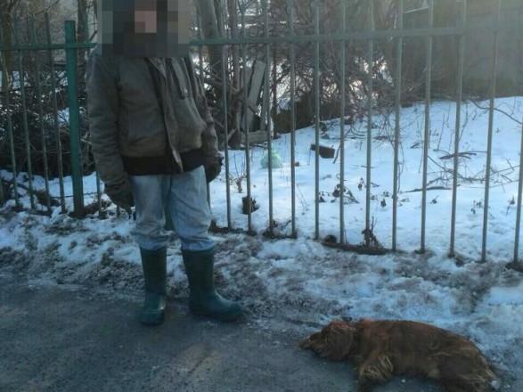 УЛьвові чоловік вкрав і задушив собаку свого родича