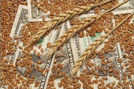 Российский потребитель не заметит снижения цен на мировом рынке