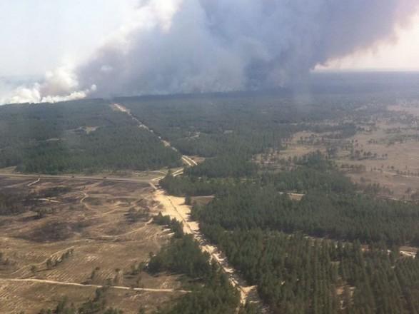 Масштабну лісову пожежу на Херсонщині локалізували
