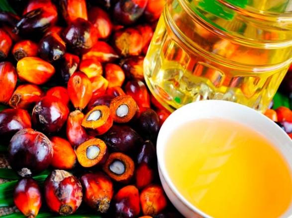 Нардеп пояснив, чому росте імпорт пальмової олії в Україну