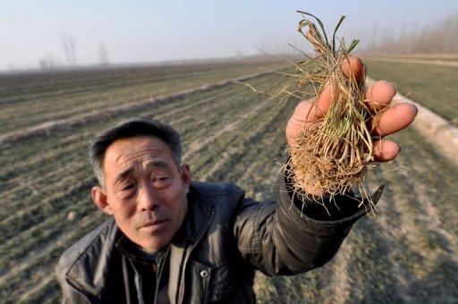 Посуха у Китаї змусила владу задуматися про виклик штучного дощу