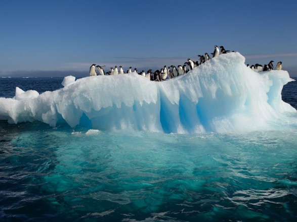 Швидкість танення льодовиків Антарктиди потроїлася - ООН