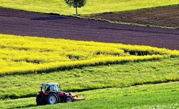Порошенко закликав створити ринок землі і підвищувати зарплати