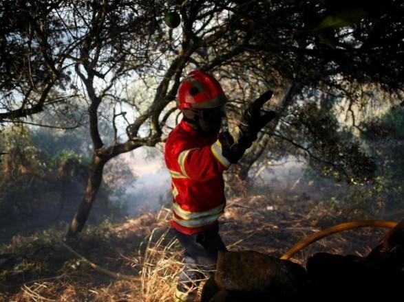 У Португалії спалахнули лісові пожежі: є поранені
