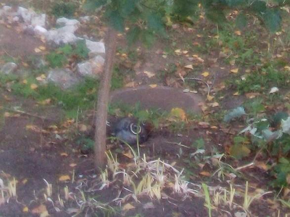 У Лисичанську біля школи впала частина ракети
