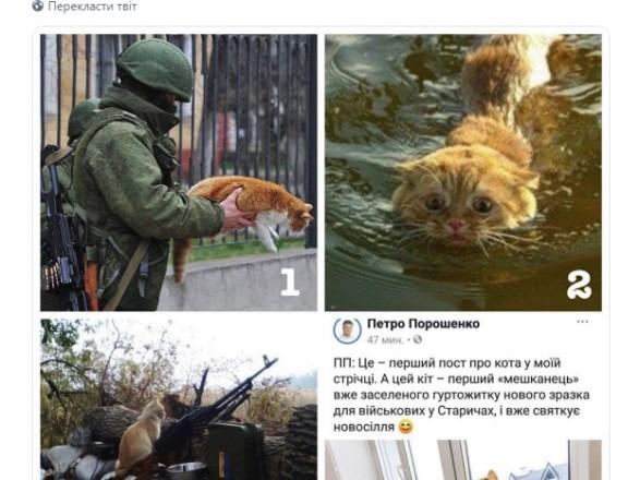 Пост Порошенка про котиків запустив флешмоб у соцмережах