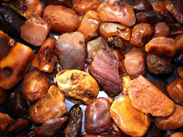 Добыча янтаря в Украине обрела масштаб экологического бедствия — Зелен
