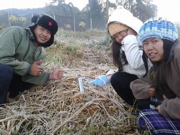В Таиланде шесть человек умерли из-за внезапного похолодания