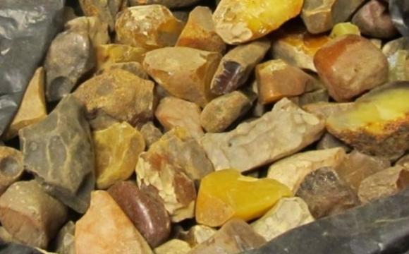 В Ровенской области группу лиц подозревают в незаконной добыче янтаря