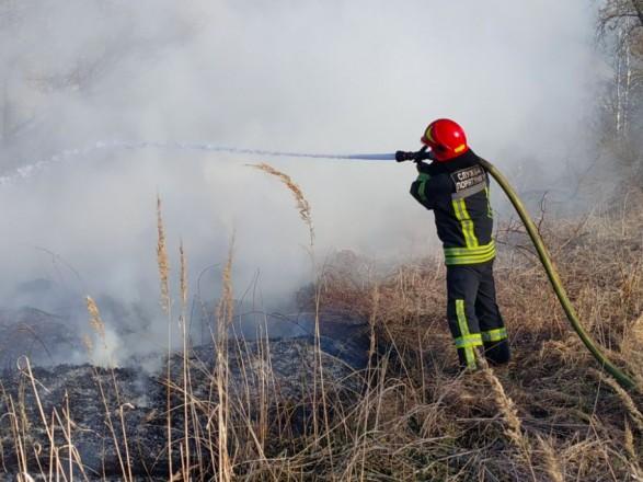 В Киеве за сутки произошло 11 природных пожаров