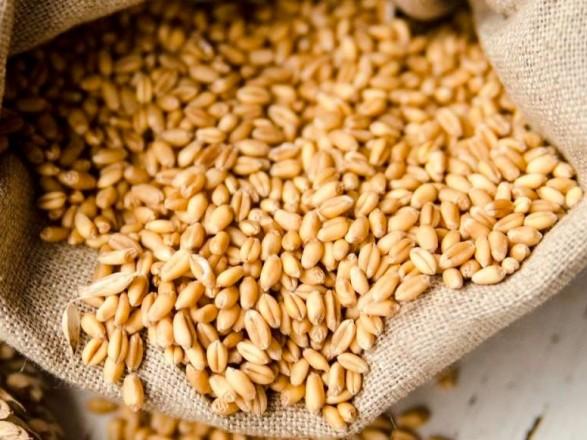 В ВР зарегистрировали законопроект Кабмина о временных ставки ввозной пошлины на отдельные виды зерновых