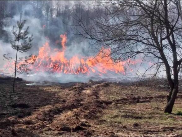 В ГСЧС рассказали об основных причинах возникновения пожаров в экосистемах