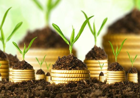 Монопольным контролером за урожаем фермеров станет шестимесячная частная компания