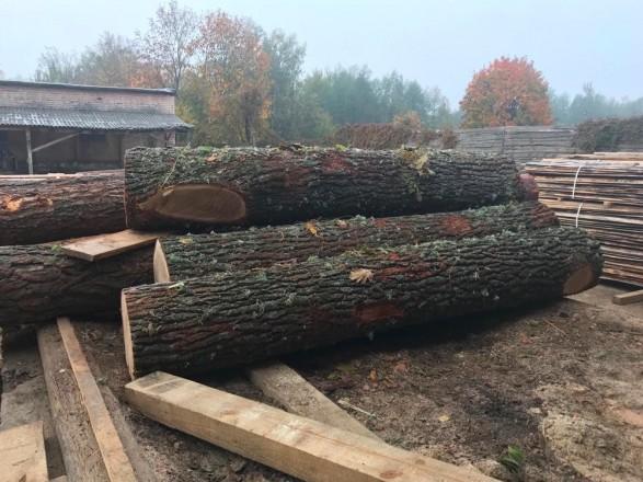 Украина наращивает экспорт изделий из древесины - Гослесагентство