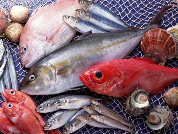 Украина в январе и феврале экспортировала живой и охлажденной рыбы на более чем 147 тыс. долларов
